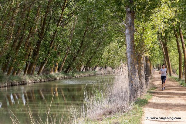 Canal de Castilla Medina de Rioseco Valladolid