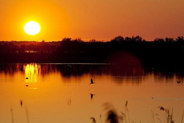 Atardecer en Doñana (c) Flickr - Miguel Paradela