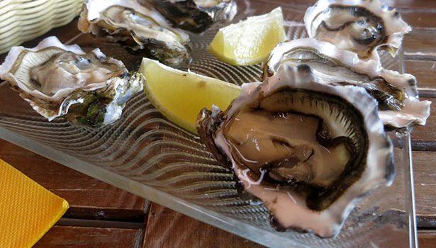 leucate-ostras-mediterraneo
