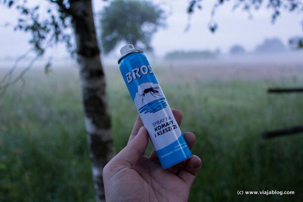 Indispensable en una visita en verano a Bialowieza (Polonia)