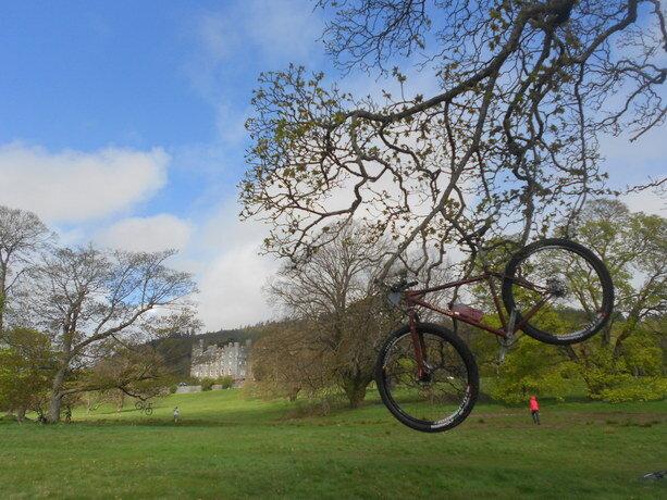 Bicis por todos lados en el Forest Park