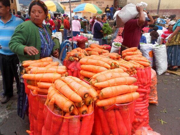 La madre de todas las zanahorias...
