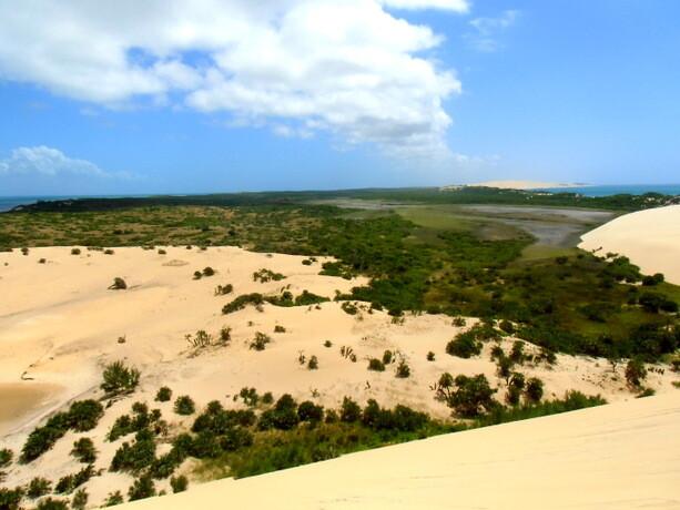Hacia el interior de la isla hay agua dulce y vegetación