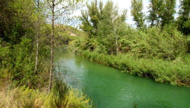 Las aguas del río Cabriel son muy limpias