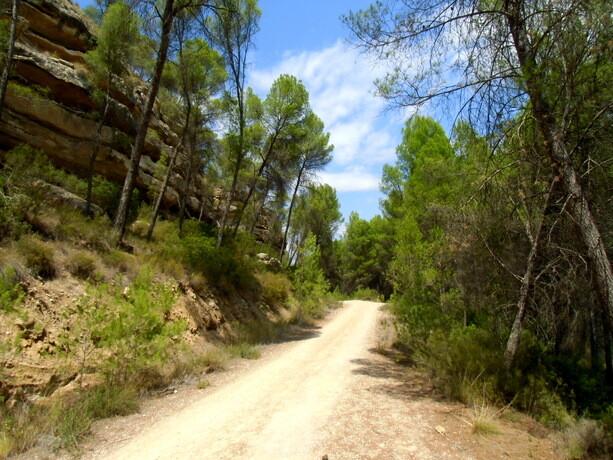 El tipo de ruta que encontraréis en el valle...