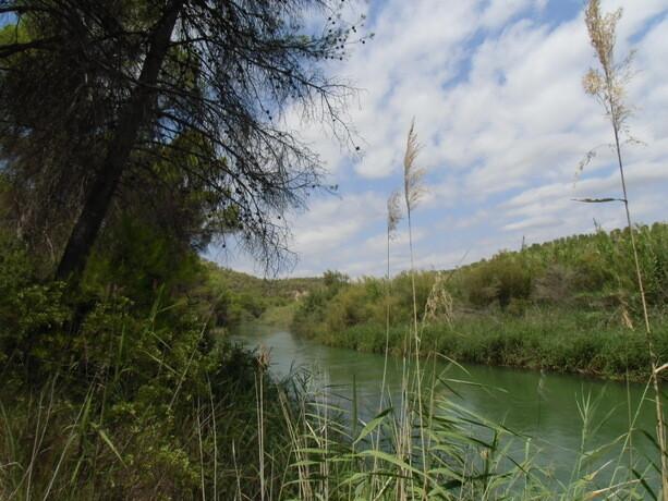 El entorno natural del Valle del Cabriel merece la pena
