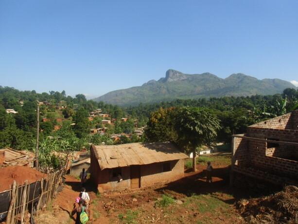 Casas de Gurué