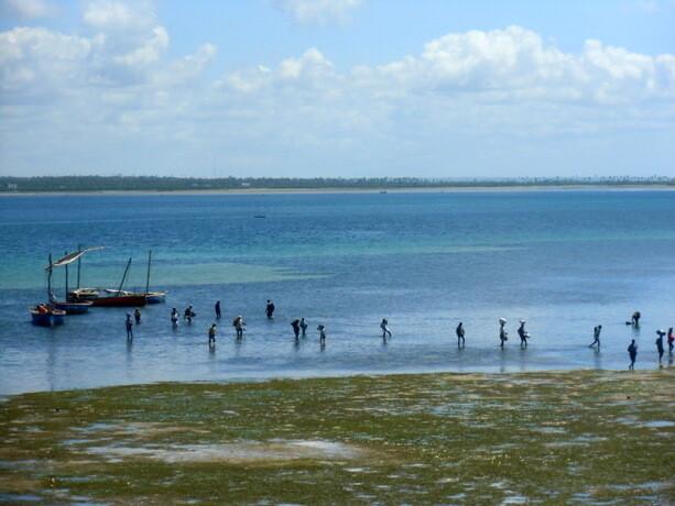 Los pescadores regresan a Isla de Mozambique