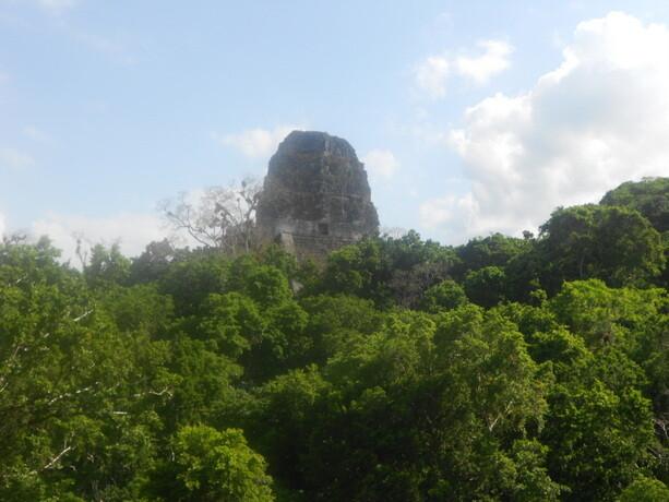Las cúpulas sobresalen en la selva