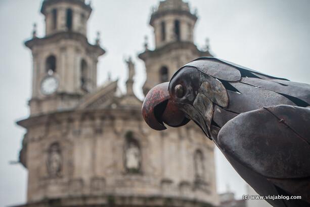 Loro Ravachol e Iglesia Virgen Peregrina en Pontevedra