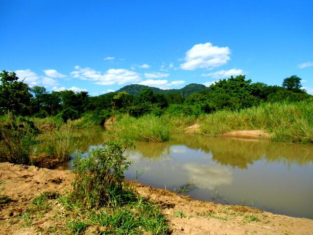 El pequeño río que ejercía de frontera natural entre el parque y nuestro campamento