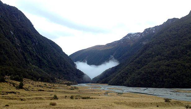 Nueva-Zelanda-Will-2