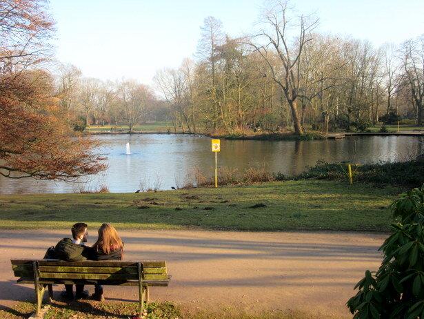 Enamorados en el parque...