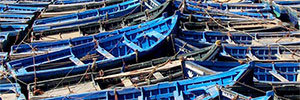 Visita a Essaouria en Marruecos