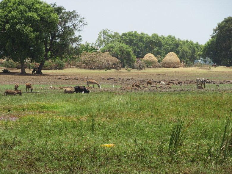 El paisaje de Ereydbir Foto (C) David Escribano