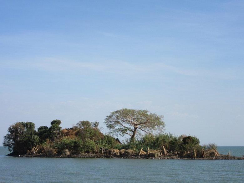Una de las islas del Tana Foto (C) David Escribano