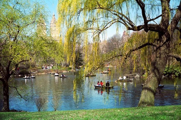 Central Park en Nueva York @Turismo_NY