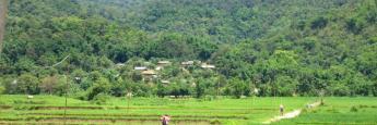 campos-kentung