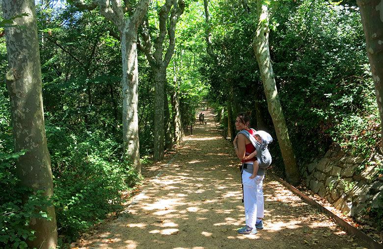 Iniciando el recorrido por las fuentes de Collserola