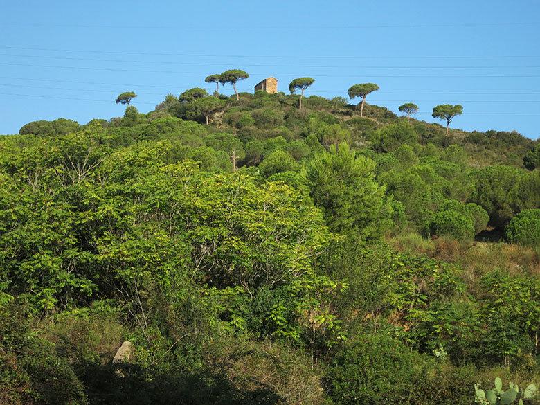La ermita de Sant Climent sobre el montasterio de Sant Jeroni de la Murtra