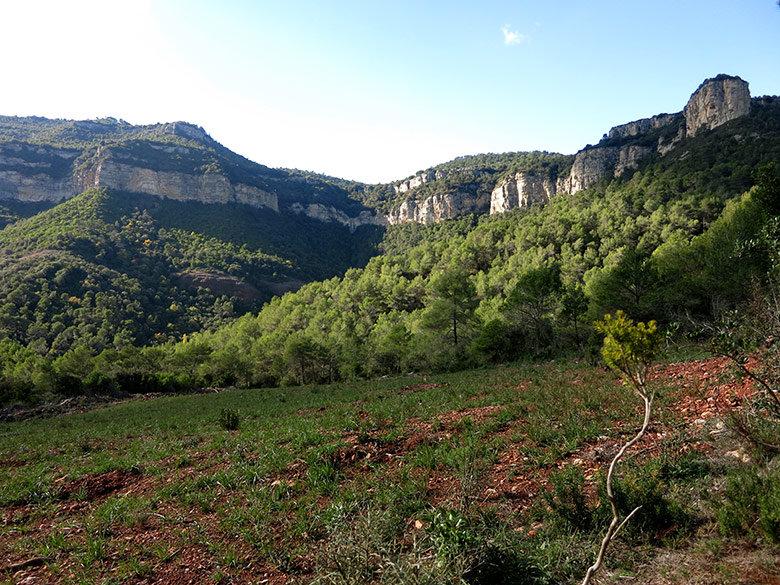 Los Cingles de Bertí desde la parte baja de La Trona