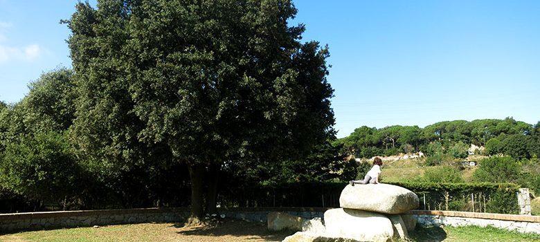 El monumento neolítico de La Roca d'en Toni