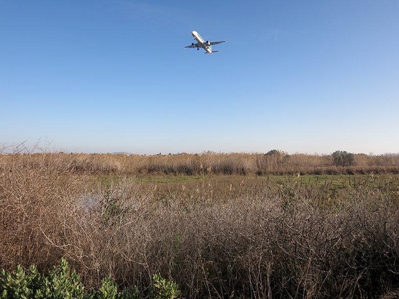 Los aviones sobrevuelan la zona a ras de suelo