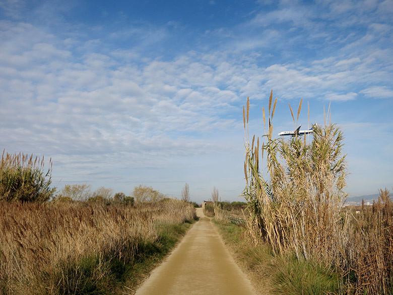 Uno de los caminos principales al lado del río Llobregat