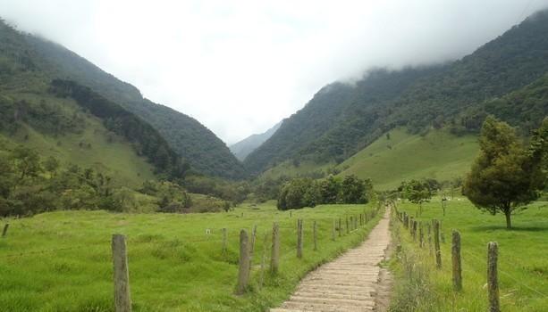 entrada-al-valle-del-cocora-613x350