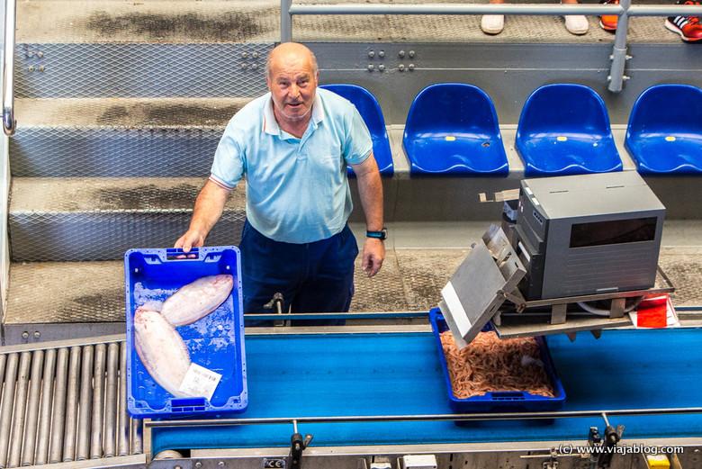 Subasta de pescado en la Lonja de Isla Cristina (Huelva)