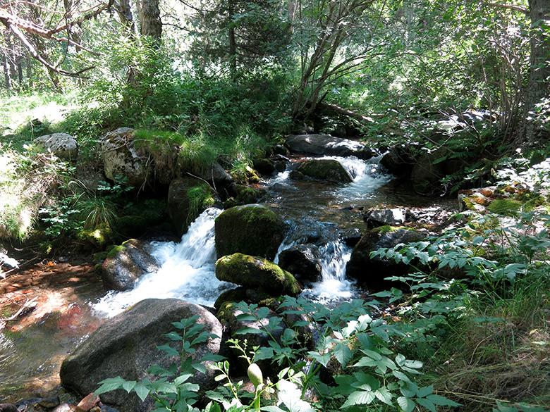 El río que cruza el valle de Eyne