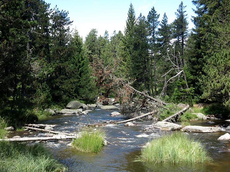 rio-tet-pirineos
