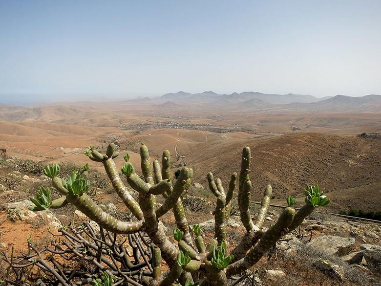 Vistas extensas a Fuerteventura desde los miradores de Betancuria