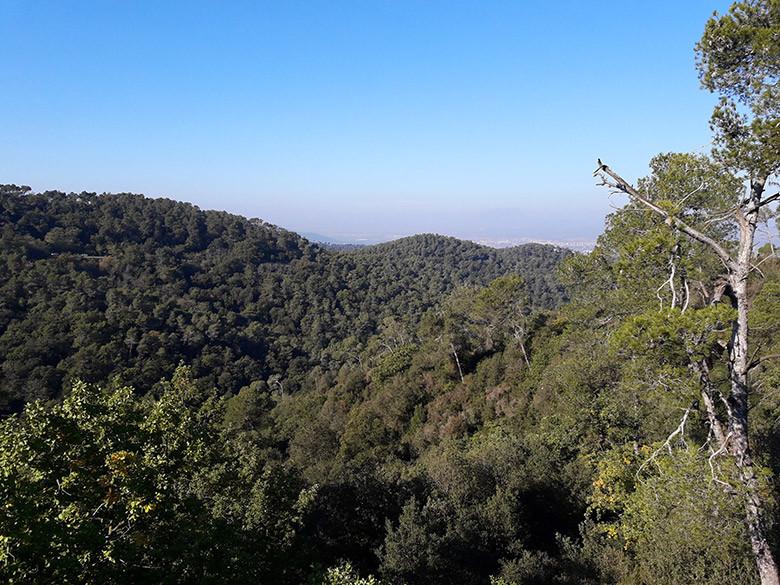 Vistas al Vallès desde Turó del Puig