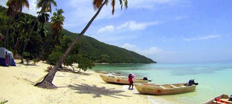 Palmeras en Kokoye Beach, Haiti,