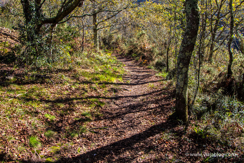 Comienzo de la Ruta Cascadas del Cioyo en Asturias