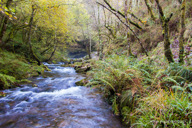Río Porcía, Ruta Cascadas del Cioyo en Asturias