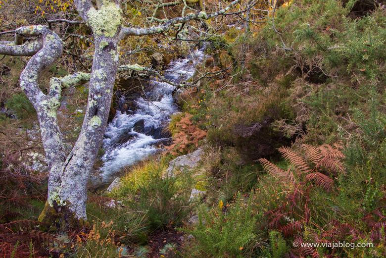 Río Porcía sobre la cascada del Cioyo en Asturias