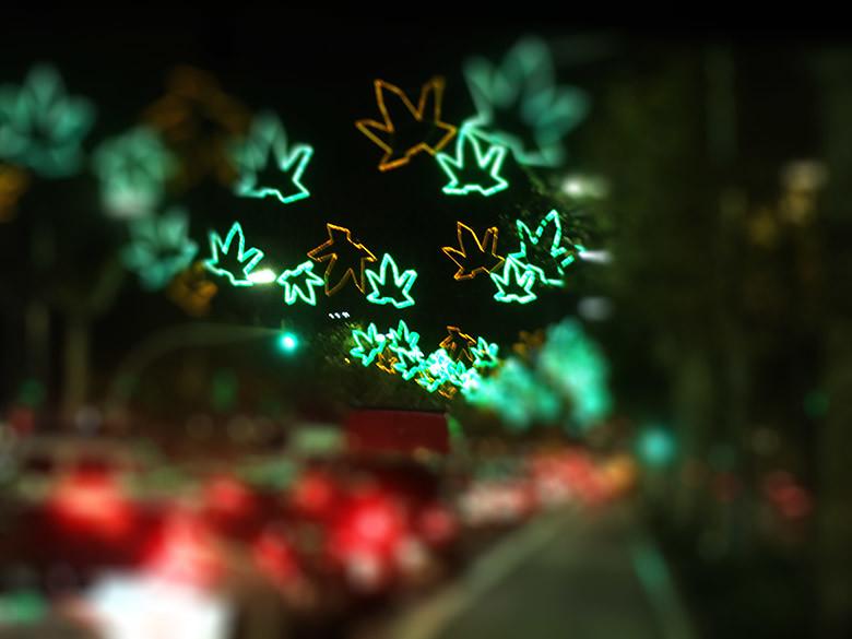 Resultat d'imatges de luces de navidad