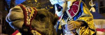Baltasar en su camello