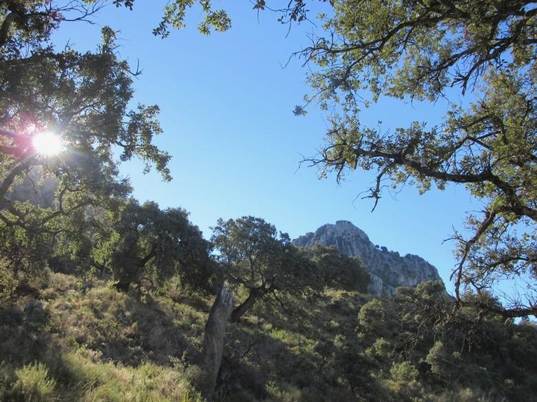 Sierra de Horconera