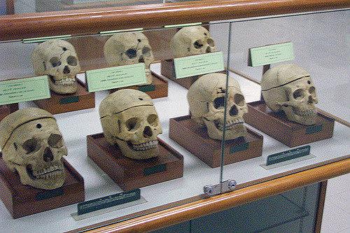 Museo de Medicina Forense, Bangkok, Tailandia