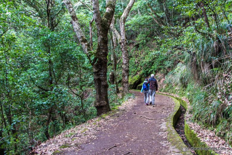 Ruta levada Mirador dos balcoes, Isla de Madeira