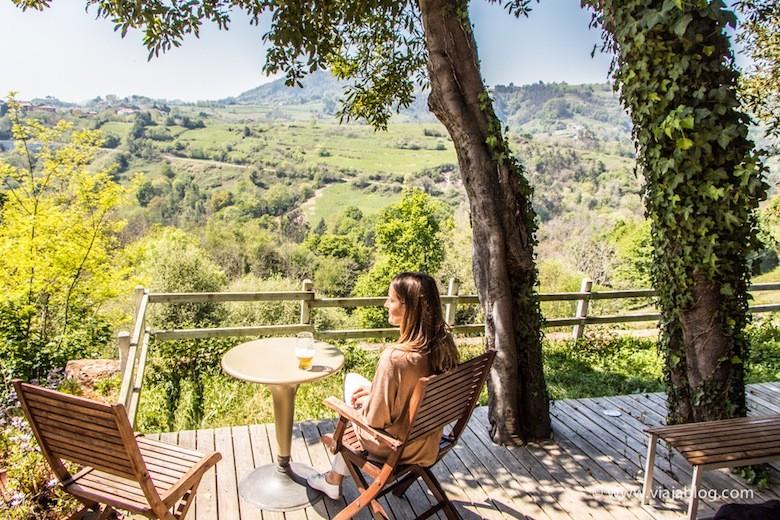 Vistas desde la Casa Rural Los Llaureles (Torazo, Asturias)