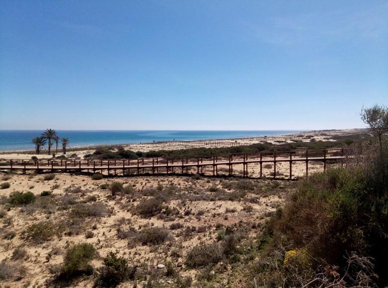 Alicante playa del carabassi