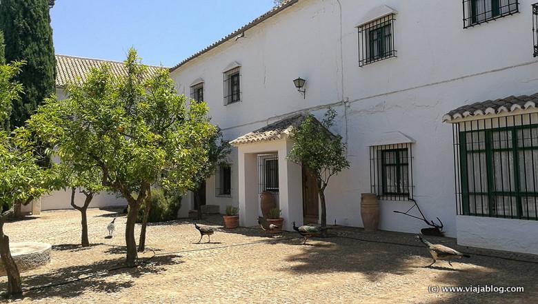 Bodega La Capuchina Málaga