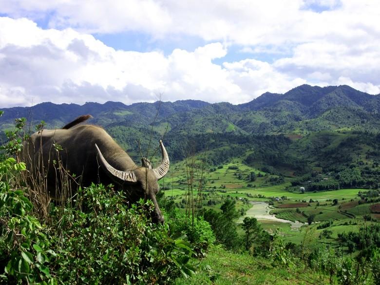 myanmar paisaje montaña