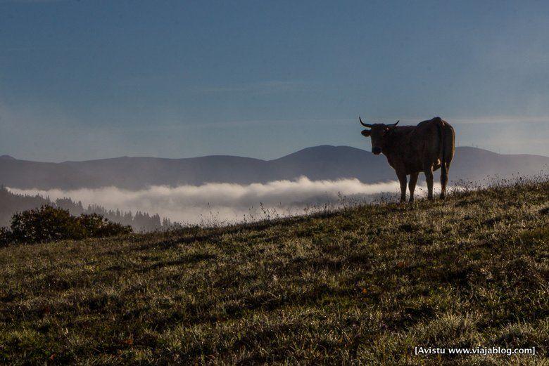 Compañía en la Ruta de Mon, Oscos Eo, Asturias