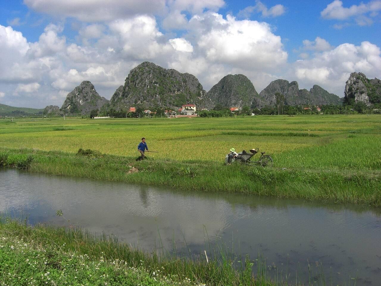 precios en vietnam