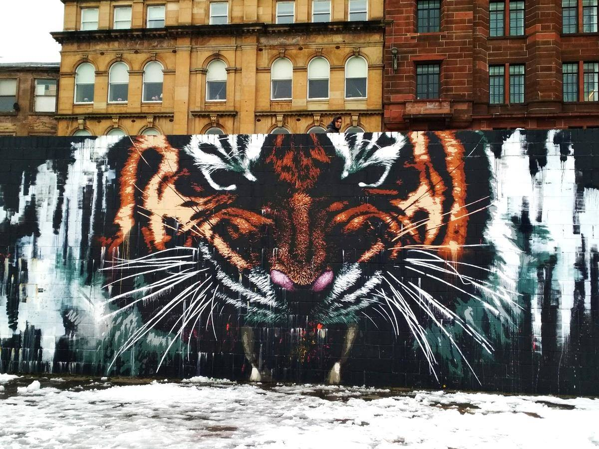 Glasgow murales